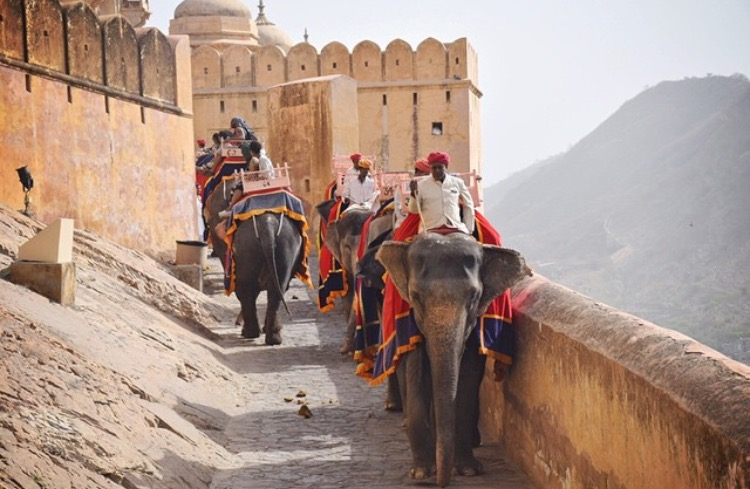 Elephant Ride to Amber Fort_Jaipur