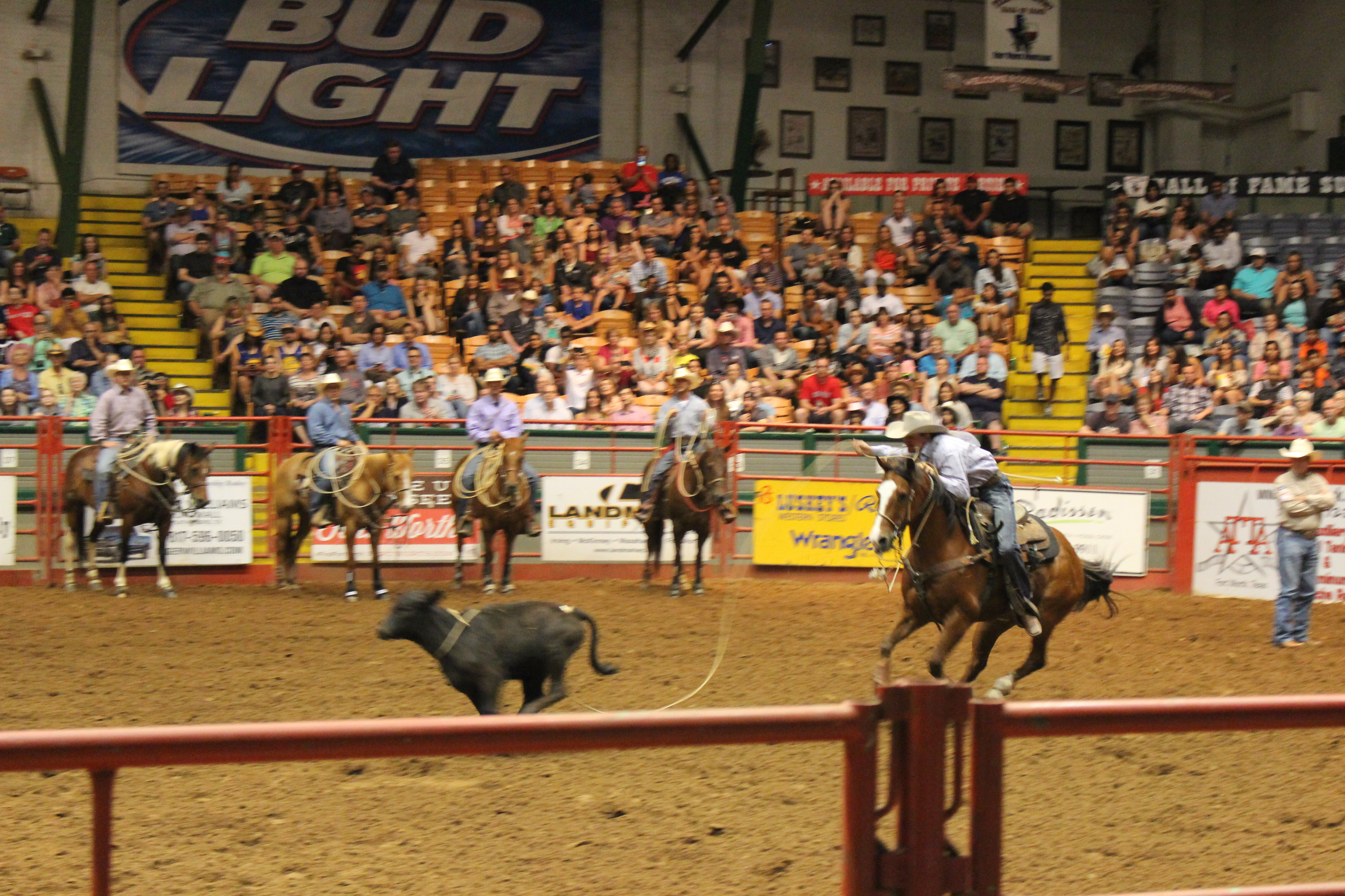 Fly Duo S Visit Stockyards Rodeo In Dallas Fort Worth